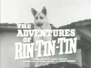 RinTinTin_title_0